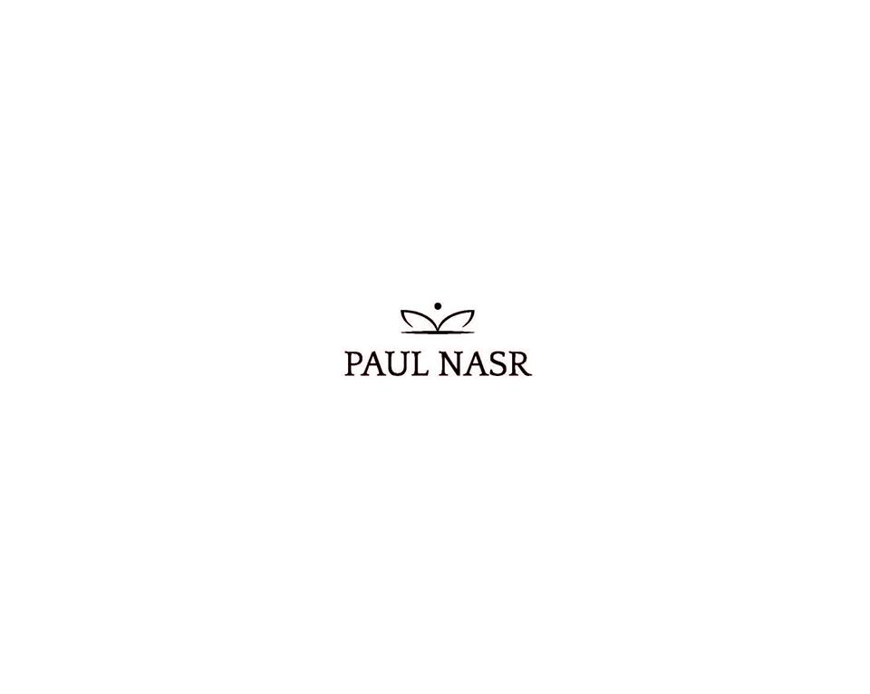 Light Lux - Paul Nasr
